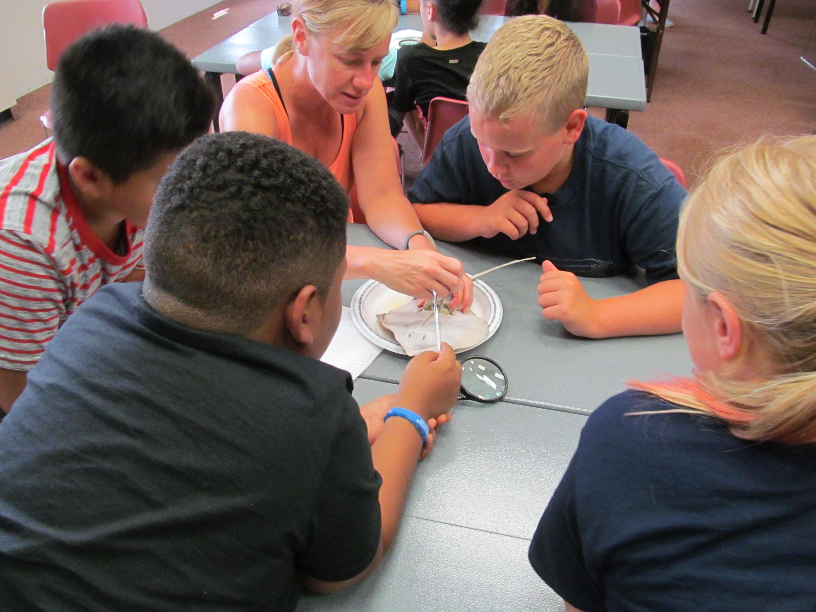 teens circled around a dissection specimen at Rock Island Library