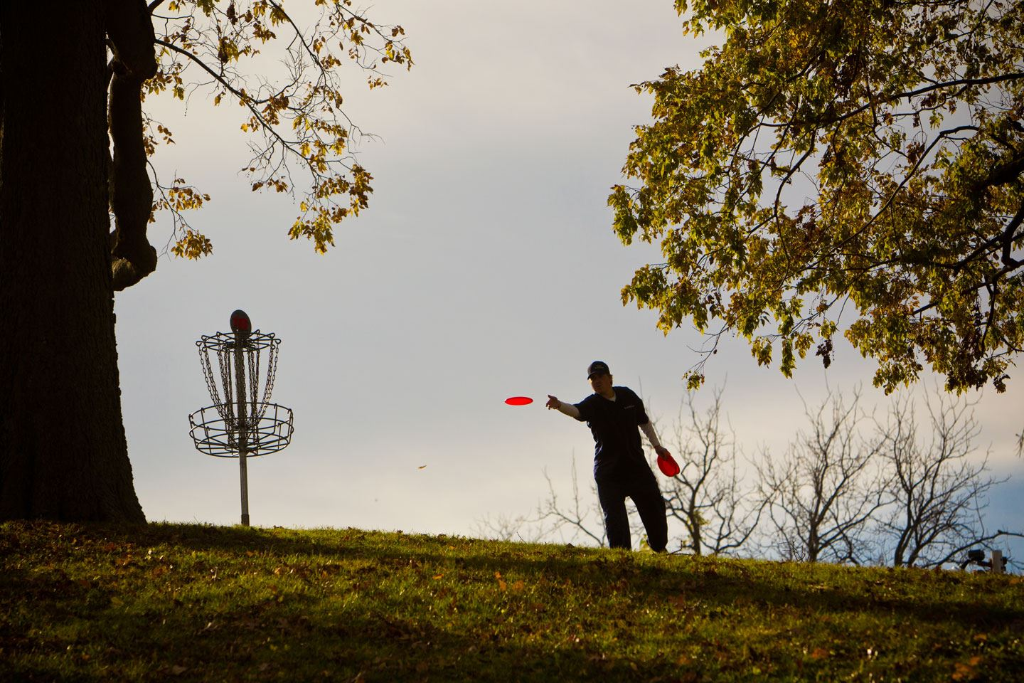Park goer playing disc golf
